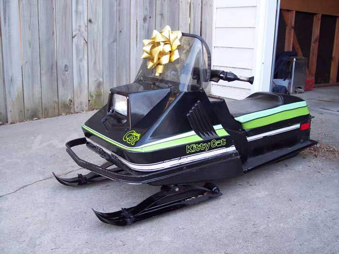 Arctic Cat Kitty Cat For Sale